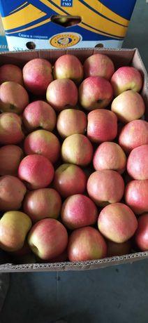 Яблука з холодильника