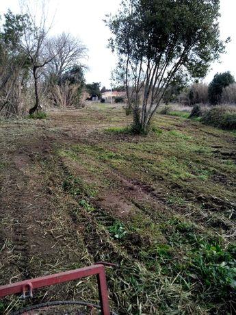 Limpeza de terrenos agrícolas e florestais