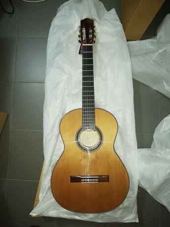 Guitarra clássica concerto.