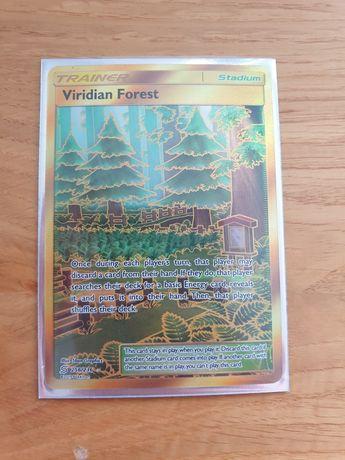 Pokemon Viridian Forest 256/236