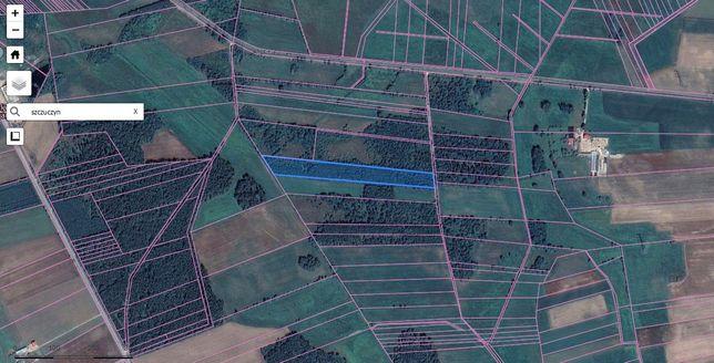 Sprzedam działkę leśna 1,7594 ha