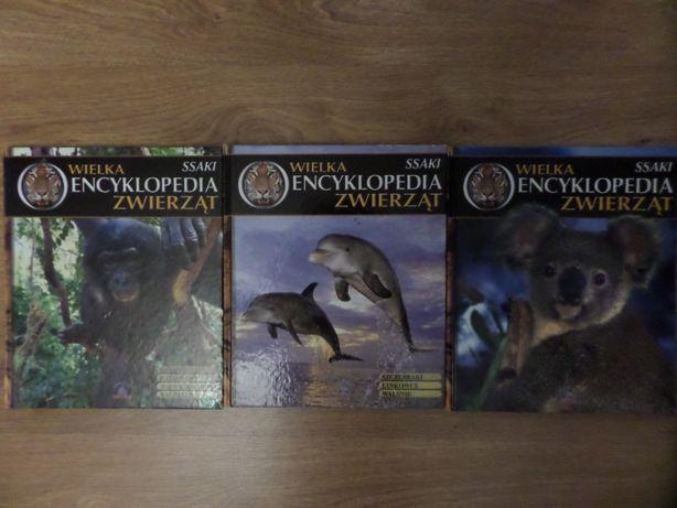 Książki dla dzieci 3 x encyklopedie zwierząt z obrazkami