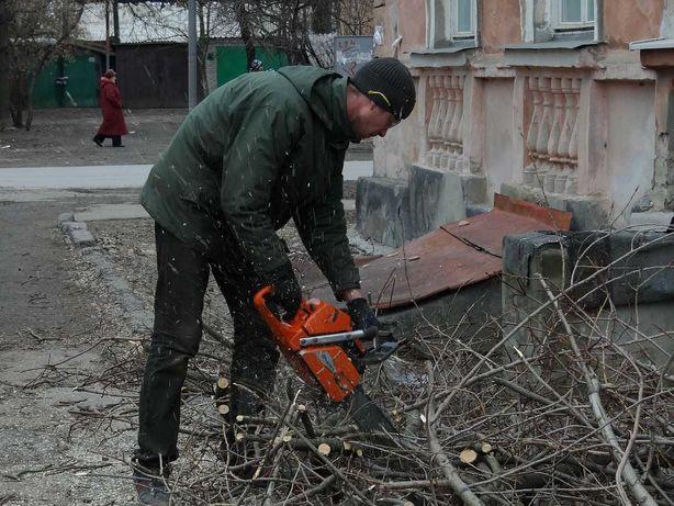Спил деревьев заготовка дров обрезка , покос травы.