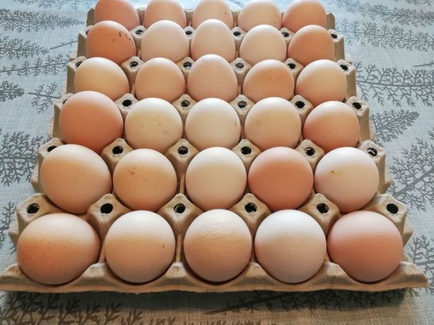 Jajka wiejskie 90gr sztuka
