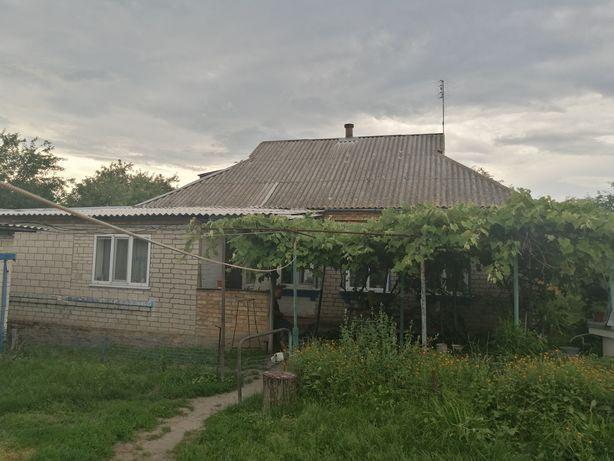 Продам будинок в селі Стави Обухівський район Київська область