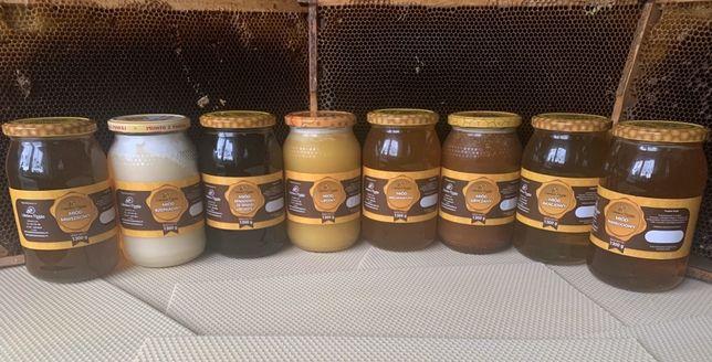 Miód gryczany,spadziowy,faceliowy,nawłociowy,lipowy,pyłek pszczeli