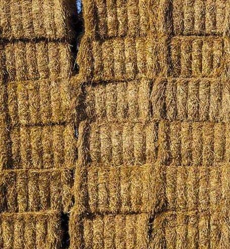 Pszenna słoma kostka z dowozem Zambrów - image 1
