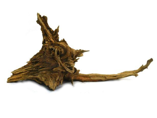 KORZEŃ DO AKWARIUM Old Pine Wood 56x14x27 .131