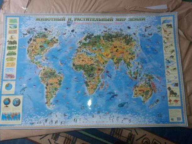 Настенная детская ламинированная карта Животный и растительный мир