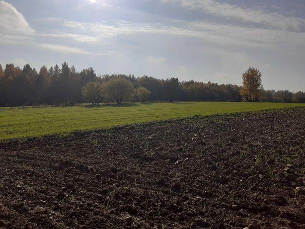Działka budowlana z ziemią rolną- Krugło, pow. Sokólski, Podlaskie