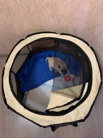 Casa animal octagonal dobrável