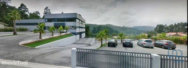 Loja - 810 m²