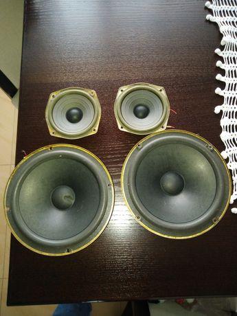 Tonsil głośniki