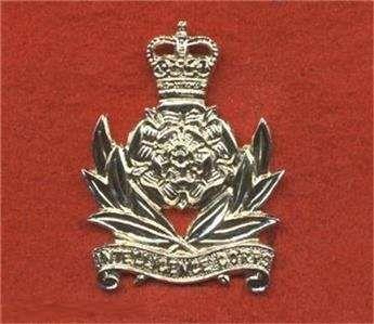 "Insignia ""Intelligence Corps E11R"" ""Anodised Aluminium Cap Badge"""