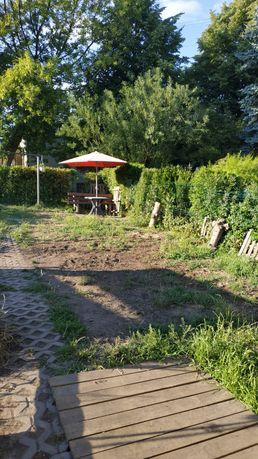 Sprzedam ogródek działkowy ROD
