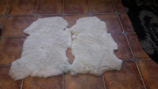Шкіри овечі