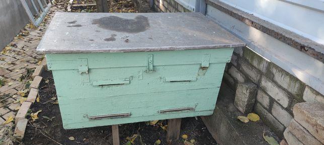 Пчелинные   улья