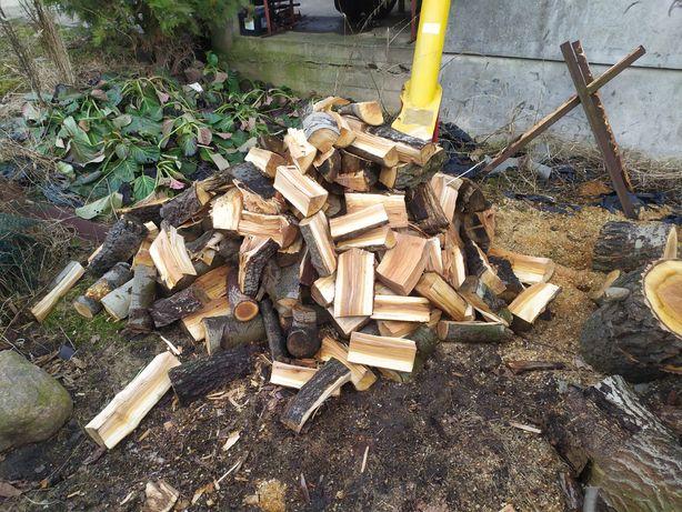 Drewno topola sprzedam