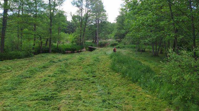 Koszenie trawy . Wycinka drzew .Usługi porządkowe