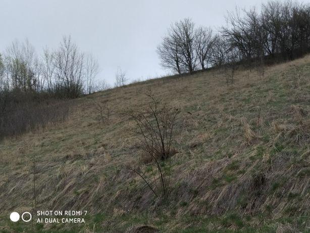 Участок 40 соток Золочевский район ( 17 км от Харькова )