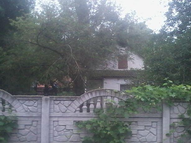 Продається будинок з участком  в м.Тараща