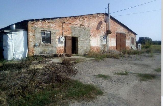 Комерційна нерухомість, с.Москаленки, Богуславский р-н, Київска обл.