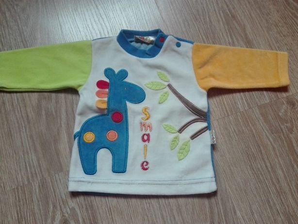 bluzki dla chłopca 68