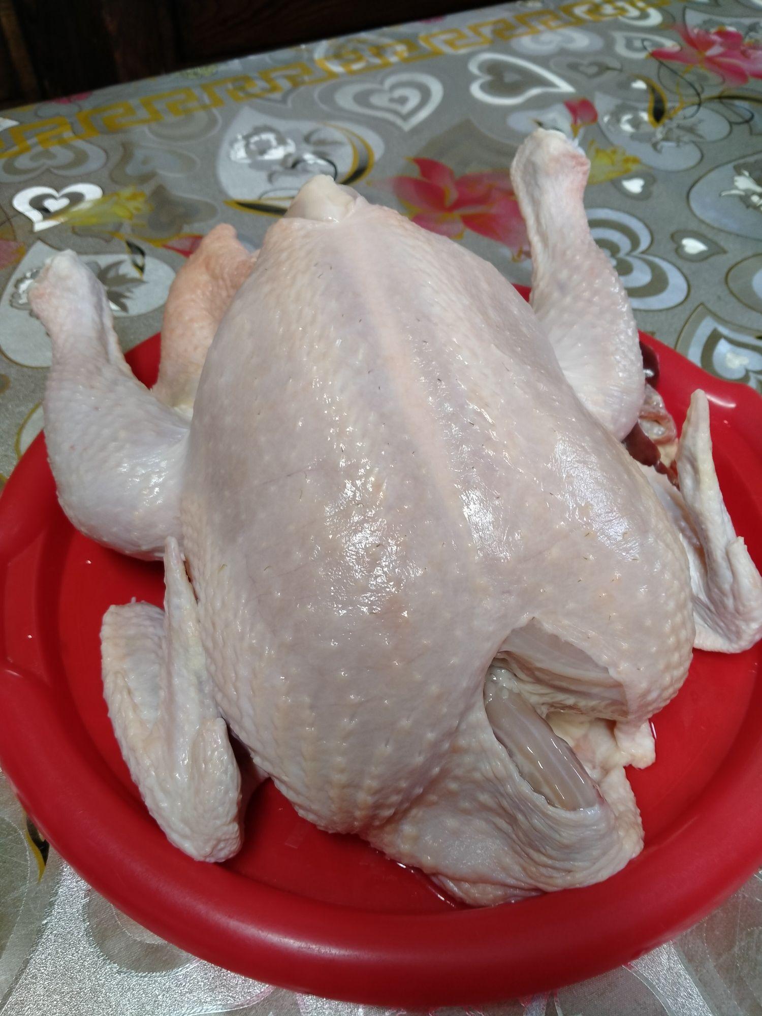 Kurczaki Brojlery mięsne zdrowe i bez chemii dowóz
