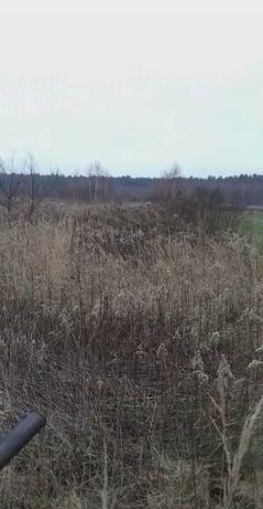 Wydzierżawię ziemię rolna /orną /łąki wynajem nieużytki