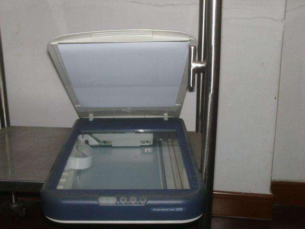 Vendo Scanner Epson Perfection 1250
