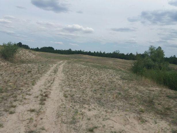 Земельный участок в херсонской области Олешковский район с. Пищанка