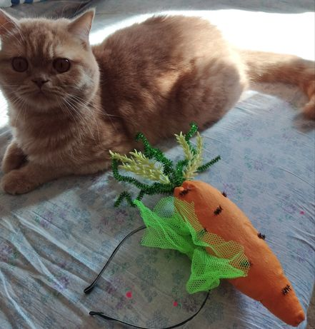 "Ободок ""Морковка"""
