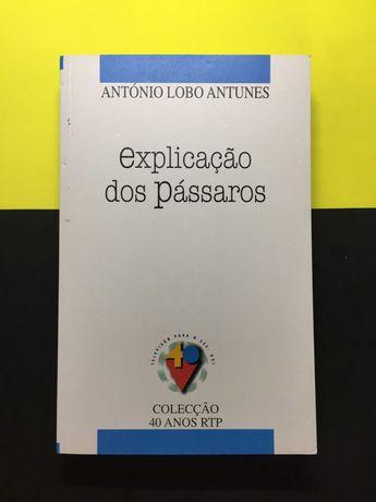 António Lobo Antunes - Explicação dos Pássaros (Portes CTT Grátis)