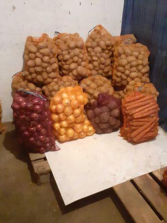Ziemniaki cebula buraczki marchew