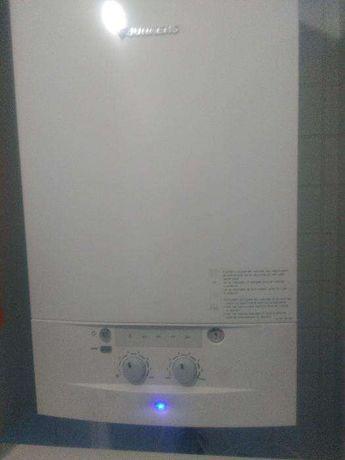Assistência caldeiras gás gasóleo esquentadores e automatismo