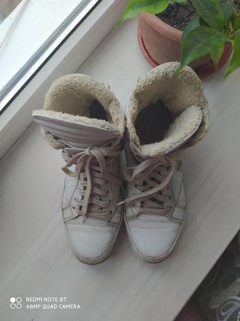Натуральная кожа ( махра) кроссовки 38 рр