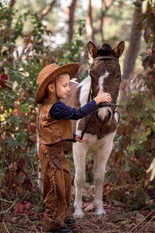 Пони, лошади, уроки верховой езды.