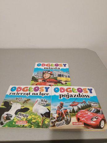 książka Odgłosy miasta, pojazdów, zwierząt na łące 3 sztuki za16zł