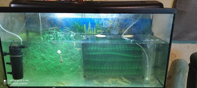 Продам акваріум в комплекті