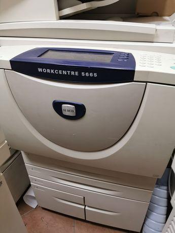 Xerox 7242. 5665. 5655. 5638. 5745. 5790, 8830 wide format.