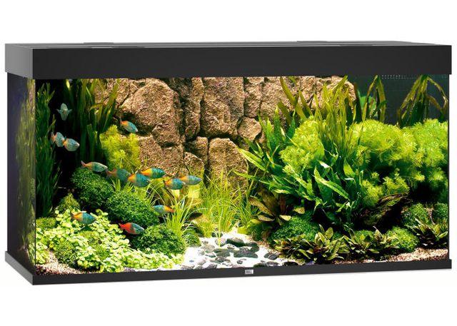 NOWY zestaw Juwel RIO 350 LED (350l) bez szafki, różne kolory