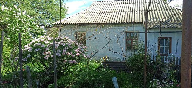 Продам  дом в пгт.Вишневое(Днепропетровской обл)