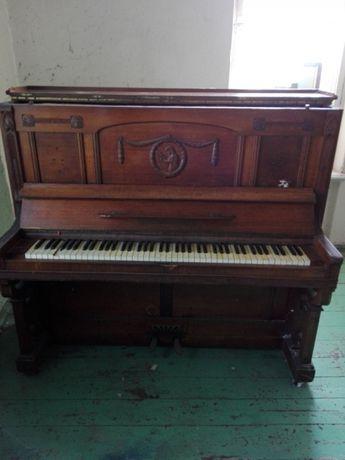 Pianino K. Ericke. Liegnitz