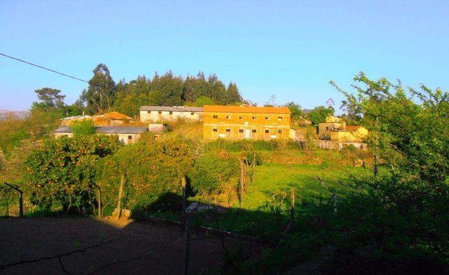 Quinta agrícola e avícola / Arcozelo das Maias / Oliveira de Frades .