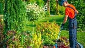 Royal Garden Uslugi Ogrodnicze
