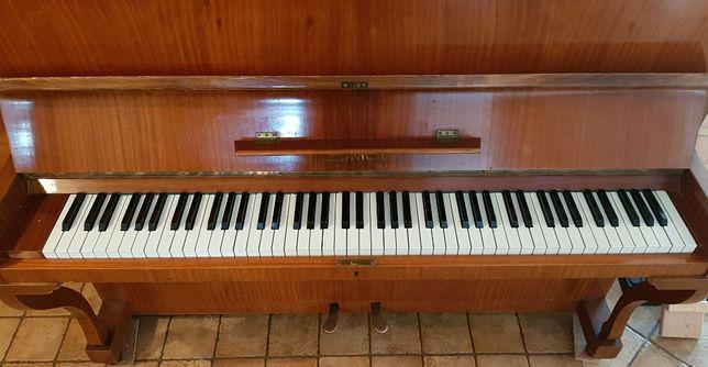 pianino Legnica nauka gry na pianinie