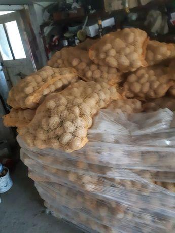 Ziemniak jadalny OKAZJA!!!