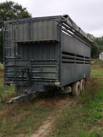 Reboque transporte gado