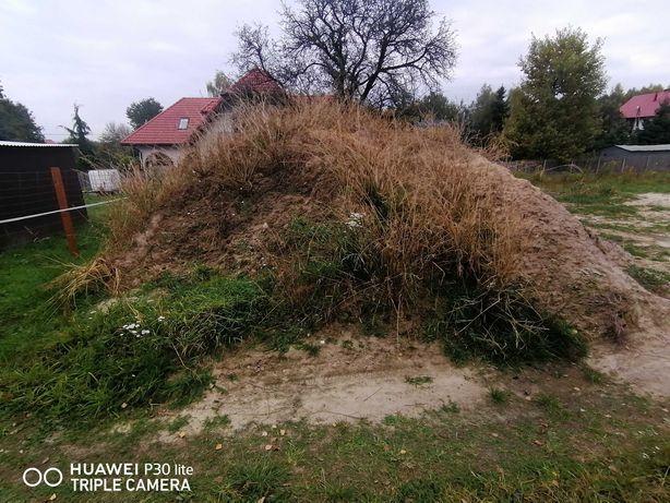 Oddam ziemię  humus zmieszany z piaskiem Kielce Zalesie