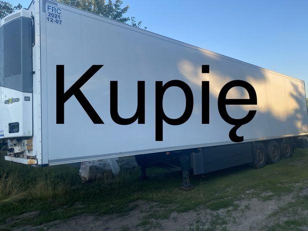 Skup naczep chłodni Schmitz Wielton Kogel Lamberet Krone Fliegl